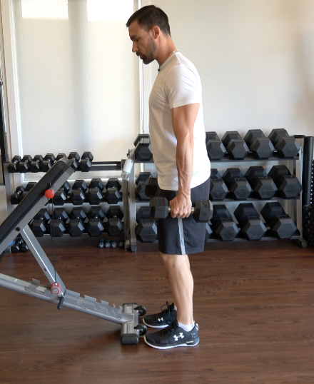 Technique Tuesday: Head supported dumbbell row.